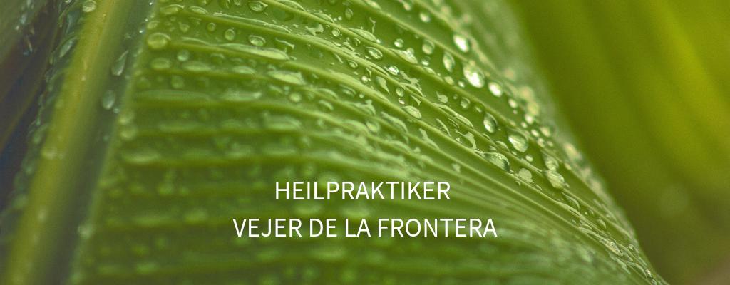 DEU_HP_Vejer.png